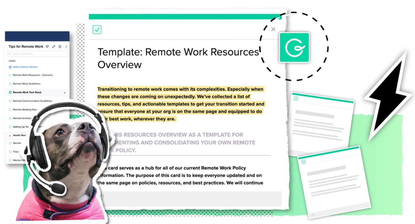 coronavirus email personalization template
